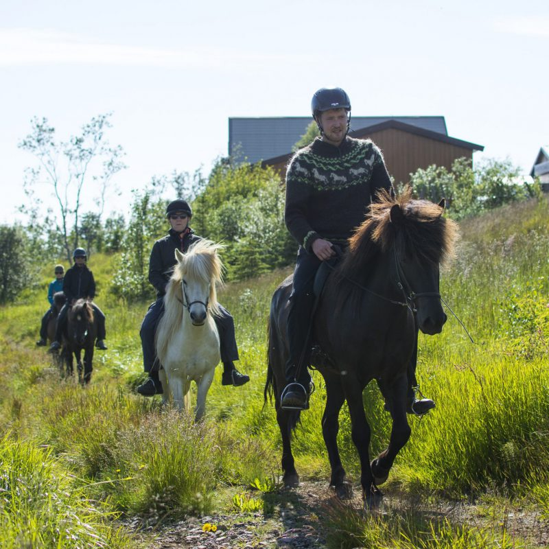 Arnanes Country Hotel - Horse Riding Tour